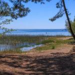 Extrémité de la plage de Piqueyrot à Hourtin en Gironde