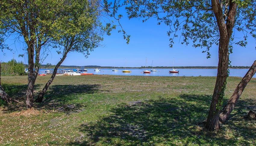 Bord du lac d'Hourtin sur les rives de Piqueyrot