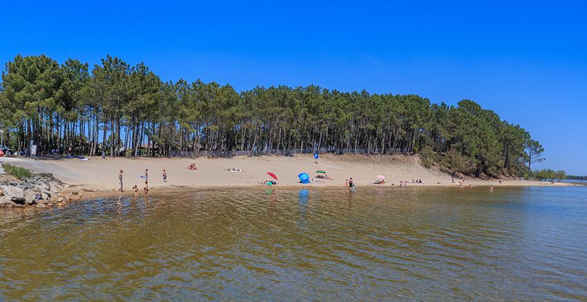 Vue panoramique sur la plage de Piqueyrot à Hourtin en Gironde