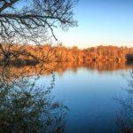 Balades autour de la Lagune de Contaut à Hourtin