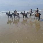Balades à cheval à Hourtin au centre equestre du Cardin