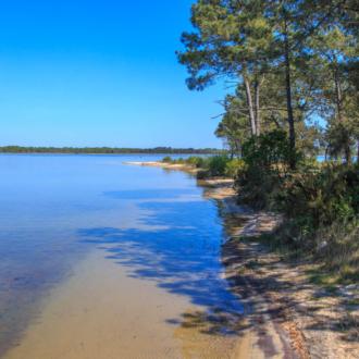 Bord du lac d'Hourtin en Gironde
