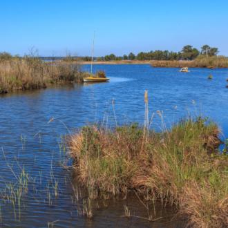 Lac d'Hourtin depuis Lachanau