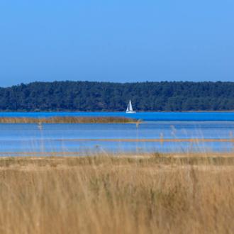 Voilier sur le lac à Hourtin