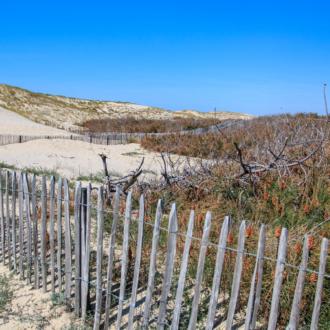 Passage de la dune vers Hourtin Plage
