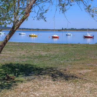 Vue sur le lac à Piqueyrot Hourtin