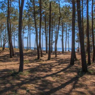Aire de pique nique proche de la plage de Piqueyrot